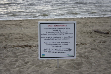 The tourism activities in English Bay were suspended by the spill for at least eleven days.