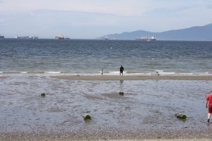 Leisure activity did eventually return to English Bay. This photo taken on Victoria Day (May 18th).